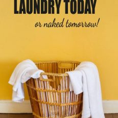 muursticker wasruimte laundry today or tomorrow naked k143