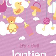 Poster. In A4 en A3 formaat. It's a girl! (Eigen naam)