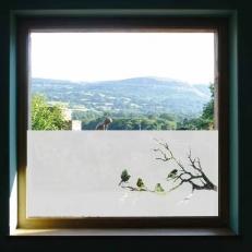 Raamfolie. Overige ramen. Vogels zittend op boomtakken
