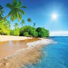 Tuindecoratie Doek zonder Ringen Tropisch Strand