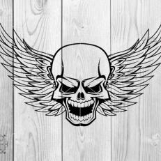 Digitaal Design Skull Schedel Gevleugeld