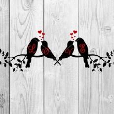Digitaal Design Dieren Verliefde Vogels Met Harten Tekst: Love